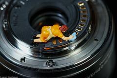 Tiny People - Kontakte reinigen (J.Weyerhäuser) Tags: tinypeople macromondays photographygear hmm kontakte objektiv nikon 1