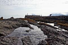 Fjæra sjø - - Low tide (erlingsi) Tags: tide lowtide fjære fjærasjø runde goksøyr noreg sea sunnmøre