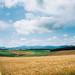 北海道。美瑛 (stanley yuu) Tags: hokkaido japan natural nature sky 自然 日本 北海道 美瑛 biei