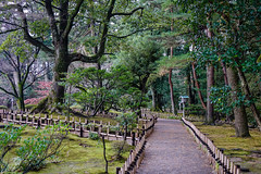Walking road at Kenrokuen Garden (phuong.sg@gmail.com) Tags: alley autumn beautiful carp color famous fish foliage footpath garden green icon japan japanese kanazawa kenrokuen kotojitoro land landscape lantern lawn leaves moss nature outdoors park path pavement perspective plant pond road rocky scape scenery serene stem stone summer sunlight tranquil tree urban walkway wild woods zen