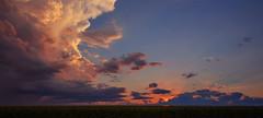 Dusk Delight (mallanf61) Tags: cloudsstormssunsetssunrises clouds sky iowa sunset corn farm