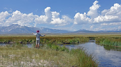Fishing View - 876 (simpsongls) Tags: owensriver mountains fishing river valley grass mammothmountain flyfishing mountain meadow sky clouds