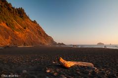 (Nick Kanta) Tags: beach color d90 humbugmountain nikon ocean oregon oregoncoast outdoorphotography people sand sky sunset tamron1750 water wood