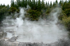 Bubbling hot mud (mlaichtastic) Tags: waiotapu waikato newzealand nz