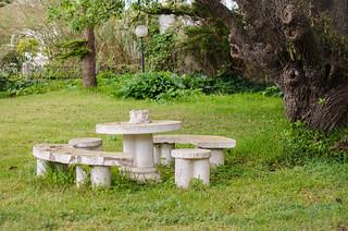 The old forgotten garden. El viejo jardín olvidado.