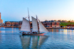 Baltimore Harbor (cj13822) Tags: baltimore clipper sail sailboat harbor pier sunset scenic chesapeake innerharbor fort mchenry fortmchenry landscape seascape skyline surreal boating waterway reflection reflections mirror