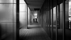 Men In Black (Sean Batten) Tags: london england uk europe eastlondon canarywharf docklands city urban streetphotography street blackandwhite bw people tunnel reflection walking building window