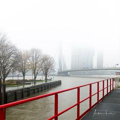 Misty Rotterdam V (Alec Lux) Tags: rotterdam architecture atmosphere bridge canal city cityscape erasmus fog holland mist misty netherlands structure urban water