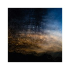 Waiting for Nightjars (catkin314) Tags: nightjar newforest newforestnationalpark nature twilight crepuscular intentionalcameramovement icm multipleexposure evening eveninglight hampshire impressionistphotography
