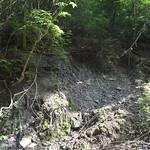 DSC_1339 thumbnail