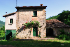 #Holiday Time (graceindirain) Tags: rural abandoned countryside summer graceindirain