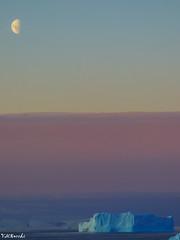 Colores (V Maximiliano R) Tags: atardecer sunshine antártida antarctica wild paisajes ice sunset landscapes
