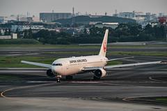 20180716 ITM JA601J (dora9092) Tags: 伊丹空港 japanairlines osakainternationalairport 展望デッキ rjoo 大阪国際空港 itm jal 767300 itamiairport 日本航空 boeing767346er