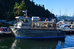 Horseshoe Bay Marina - West Vancouver (SonjaPetersonPh♡tography) Tags: westvancouver westvan districtofwestvancouver horseshoebay horseshoebaymarina inlet howesound nikon nikond5300 landscape water waterscape bcferries bc britishcolumbia canada harbour vessels boats marina fishingboat