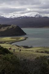 Snow capped (linda.m.davison@btinternet.com) Tags: scotland sutherland horse water sea seascape snow benhope castlevarrich kyleoftongue