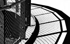 Circular fence shadow (cammino5) Tags: sw zirkular zaun zellertor würzburg juni 2018 bayern deutschland