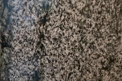 White marble texture 2 (quinet) Tags: 2017 amsterdam antik hetloo holland netherlands ancien antique northholland neterlands 528