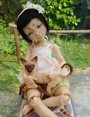 Sitting in the sunshine (stashraider) Tags: dust dolls appi lunn eve studio sphynx cat 5cm ball jointed resin doll