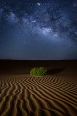 Milkyway (hisalman) Tags: astrography milkyway night desert dunes hisalman salmanahmed nature landscape galaxy stars