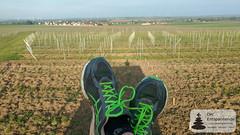 Farewell Tour für Asics Gel Kayano 22 (Frank Hamm) Tags: deutschland rheinlandpfalz rheinhessen selztal selzen joggen sunriserun