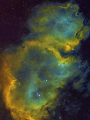 Soul Nebula (SHO + RGB) (Alessio Beltrame) Tags: astroimaging cassiopeia cosmos deepsky fsq85edx halpha narrowband photoshop pixinsight qhy163m qhyccd sky soulnebula space takahashi astronomy astrophotography nebula star stars astrometrydotnet:id=nova2530434 astrometrydotnet:status=solved