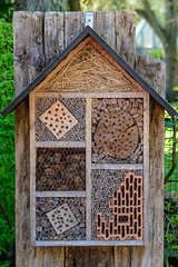 Insect hotel (22.04.2018) (Siebbi) Tags: insecthotel bughotel insecthouse insektenhotel naturschutz natureprotection natureconservation natur nature