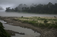 Jia Bhoreli (swati.mallik) Tags: arunachal tawang beauty nature landscape lake riverside river fog