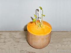 Pumpkin (artiste24artiste241) Tags: potiron pumpkin