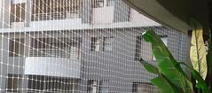 bird netting Bangalore (birdnetting1) Tags: pigeon safety net bangalore bird netting anti how get rid pigeons balcony