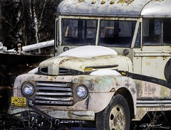 JM356 Manitoba 64_B (G. Maxwell) Tags: 2018 autophotography cars rustyandcrusty em1mkii oldrustystuff oldstuff olympus places ontario rustystuff winter zuiko omemee ford oldbuss oldbutoriginal olym300mmf40