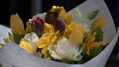 Flower Bouquet With Tulips (Scott 97006) Tags: bouquet flowers tulip pretty radient beauty fragrant