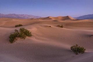 *Mesquite Flat Sand Dunes @ dawn*