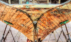 Dry Dock (clarkcg photography) Tags: boat sailboat hull wood repairs fix stands drydock