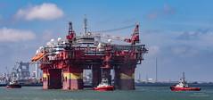 Floatel Endurance (Peet de Rouw) Tags: offshore platform floatel floatelendurance maasvlakte rotterdam portofrotterdam port panorama kotugsmit tugboats peetderouw denachtdienst holland netherlands canon5dmarkiv