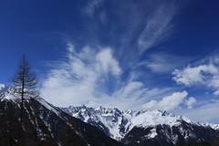 un joli ciel (bulbocode909) Tags: valais suisse montchemin montagnes nature paysages neige bleu arbres mélèzes catogne massifdumontblanc groupenuagesetciel