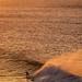 Bells Beach Big Surf-35