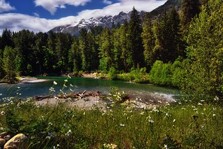 A Low Key Filter Setting to Grassy Meadow Along the Stehekin River (North Cascades National Park Service Complex)