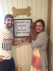 Ginger's Olga meeting her new family on pick day!