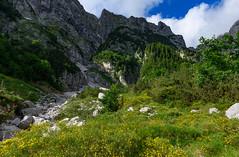 Loška Koritnica Valley (happy.apple) Tags: logpodmangartom tolmin slovenia si loškakoritnica julijskealpe julianalps slovenija landscape mountains alps wildflowers clouds geotagged