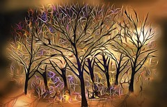 Golden Forest at Sunset (Rusty Russ) Tags: golden forest image montage sunset metal print shadow colorful day digital graffiti window flickr country bright happy colour eos scenic america world beach water sky red nature blue white tree green art light sun cloud park landscape summer city yellow people old new photoshop google bing yahoo stumbleupon getty national geographic creative composite manipulation hue pinterest blog twitter comons wiki pixel artistic topaz filter on1 tinder