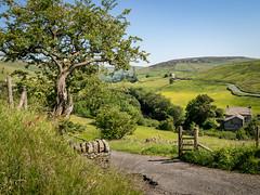 Upper Swaledale, Keld (Bob Radlinski) Tags: england europe northyorkshire richmondshire uk yorkshiredales travel swaledale keld em1c7695orf