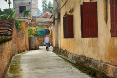Elderly man riding a bicycle down an alley way (BryonLippincott) Tags: vietnam vietnamese vietnameseculture asia asian southeastasia countryside farm farming hanoi agriculture rural ruralscene farmscene farmland country industry production community outdoors sunlight vn stroll trees man one old elderly bicycle bicycling alleyway riding hat windowsshutters red pedeling transportation exercise