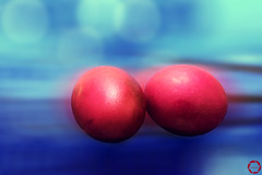 partner (NadzNidzPhotography) Tags: nadznidzphotography eggsactly ctt crazytuesdaytheme 7dwf eggs red blue bokeh