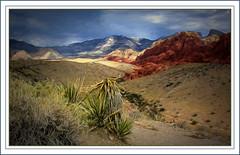 Red Rock Canyon(USA) (williamwalton001) Tags: nationalpark usa landscapephoto texture brushes tones mountains rocks red