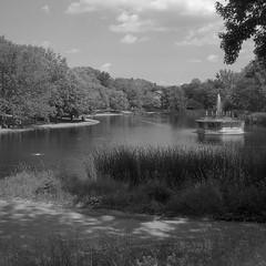 Parc La Fontaine, Montreal (Howard Sandler (film photos)) Tags: montreal film square 6x6 mediumformat zeiss superikonta tessar delta park lafontaine