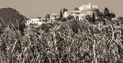 Puig de Missa, Catholic Church on the hill. . . (CWhatPhotos) Tags: cwhatphotos church puigdemissa catholic puig de missa sepia tint photographs photograph pics pictures pic picture image images foto fotos photography artistic that have which contain olympus camera holiday holidays hols hol june 2018 ibizan ibiza santaeulariadesriu santa eularia east eastern