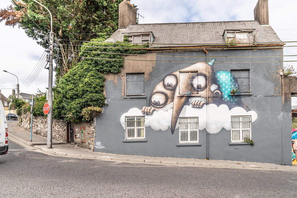 EXAMPLES OF STREET ART [URBAN CULTURE IN WATERFORD CITY]-142274