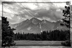black and white mountain landscape (Ola 竜) Tags: mountains monochrome landscape blackandwhite mountainchains mountain rocks trees conifers meadow grass gray cloudy sky horizon mountainlayers tatramountains composition nature branches silhouettes slopes highmountains monotone picture framing lines cables hawrań