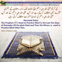 The-Prophet-pbuh-Used-to-Practice-Itikaf-in-the-Last-Ten-Days-of-Ramadan (aamirnehal) Tags: quran hadees hadith seerat prophet jesus moses book aamir nehal love peace quotes allah muhammad islam zakat hajj flower gift sin virtue punish punishment teaching brotherhood parents respect equality knowledge verse day judgement muslim majah dawud iman deen about son daughter brother sister hadithabout quranabout islamabout riba toheed namaz roza islamic sayings dua supplications invoke tooba forgive forgiveness mother father pray prayer tableegh jihad recite scholar bukhari tirmadhi