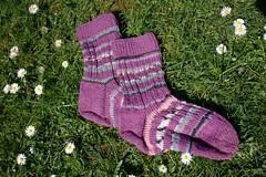 Pink striped socks (dididumm) Tags: socks wool pink knit knitting spring meadow green daisy daisies handcraft selfmade striped stripey geringelt gestreift ringelsocken handarbeit selbstgemacht gänseblümchen grün wiese frühling stricken wolle socken stricksocken